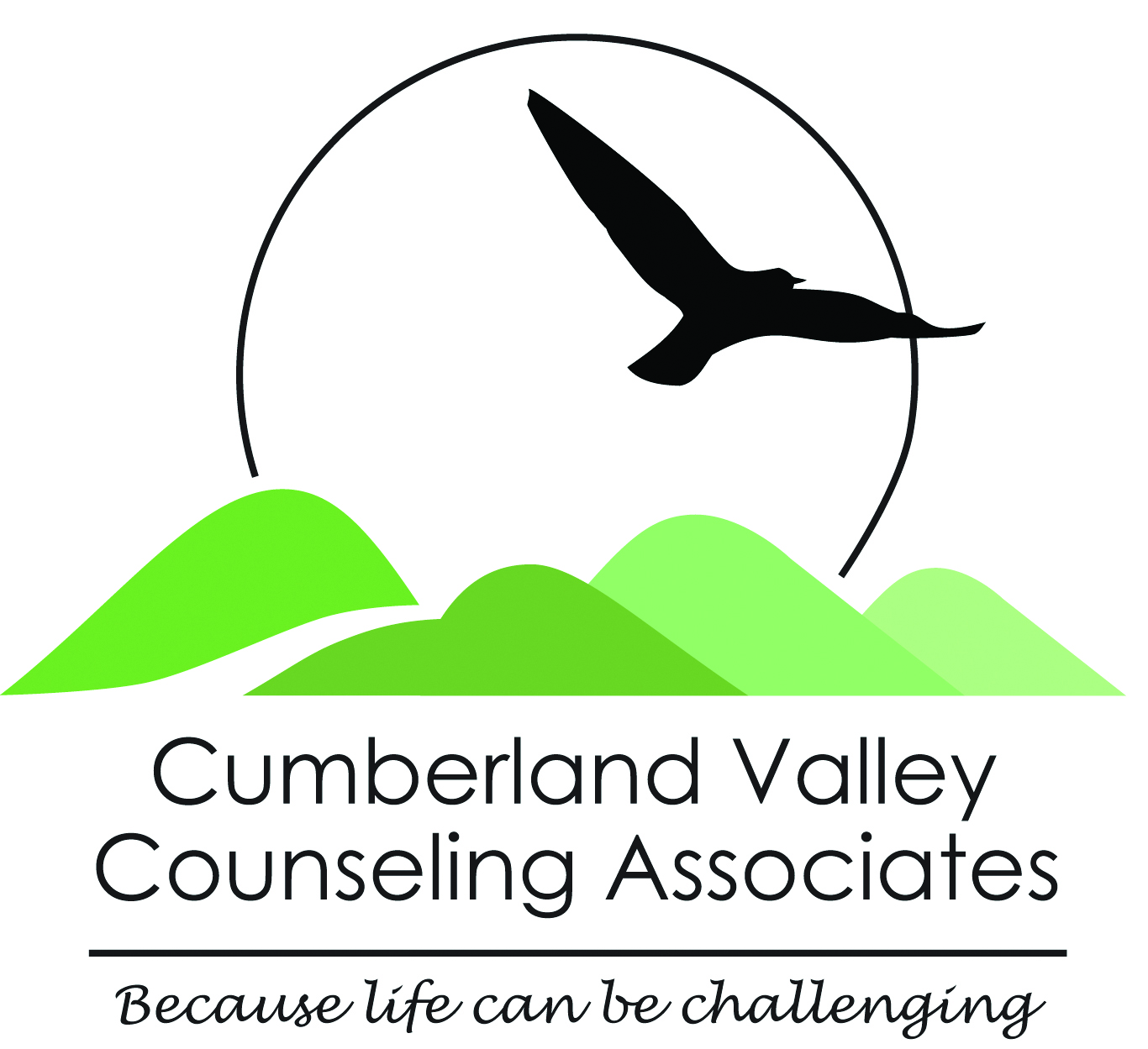 Cumberland Valley Counseling Associates Logo - Image